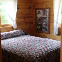 11tiger-musky-cabin-5