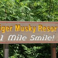 1 mile smile