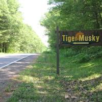 2tiger-musky-cabin